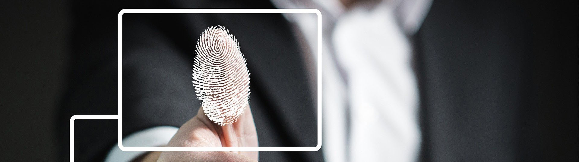 Stylized Image of Fingerprint Scan
